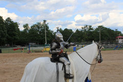 The Mounted Knight Royalty Free Stock Images