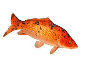 Mounted Koi Carp Stock Images