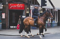 Mounted police, London, England Royalty Free Stock Images