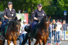 Mounted police in Moscow. At the World Cup royalty free stock photography