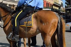 Mounted police in New Orleans Royalty Free Stock Photos