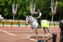 Mounted Police Officer. / Horse Guards Stock Photo