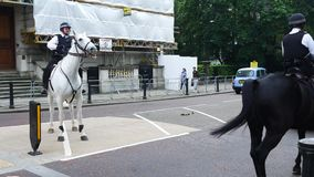 Mounted police riding in Hyde Park, London. stock video