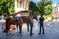 Mounted police. Seville, SPAIN - September 10, 2015 Royalty Free Stock Photo