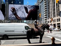 Mounted Police in Toronto Waiting for the Green Light royalty free stock image