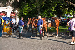 Mounted Police in Verona, Italy Royalty Free Stock Photography
