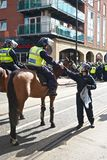 Mounted policeman receives water. June 8, 2013, English Defence League and United Against Fascism protest, Sheffield, UK Stock Photography