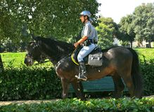 Mounted policemen Stock Images