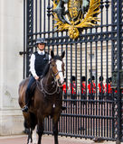 Mounted Policewoman Royalty Free Stock Photos