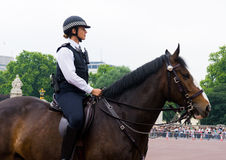 Mounted Policewoman Stock Photo