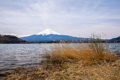 Mountet Fuji Royaltyfria Foton