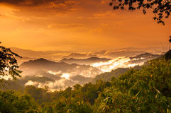 Mountian and cloud in tropical forest Stock Photos