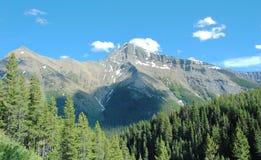 Mountian roccioso e foreste Immagini Stock Libere da Diritti