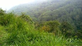 Mountiangebied in Sri Lanka Royalty-vrije Stock Afbeelding