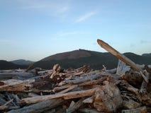 Mountians da madeira da praia Foto de Stock Royalty Free