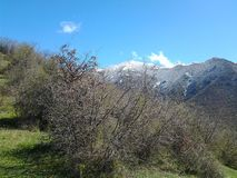 Mountine de Butiful en Arménie Lori Photographie stock