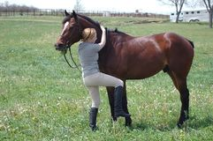 Mounting  a horse. Woman trying to mount horse bareback in field Stock Photos