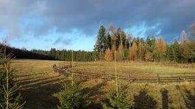 Mountins зимы волшебные Стоковое фото RF