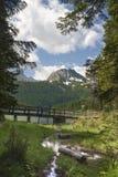 Mountins e lago Fotografie Stock Libere da Diritti