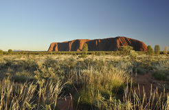 Mountsin de Uluru en la salida del sol Imágenes de archivo libres de regalías