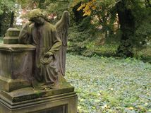 Mourning angel. A sculpture of the mourning angel. Old graveyard royalty free stock photo