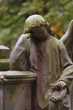 Mourning angel. A sculpture of the mourning angel. Old graveyard royalty free stock images