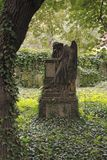 Mourning angel. A sculpture of the mourning angel. Old graveyard stock photo