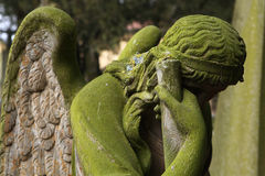 Mourning angel at the cemetery in Jaromer, Czech Republic. Royalty Free Stock Images