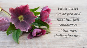 Mourning card. English Mourning card with purple hellebores Stock Photos