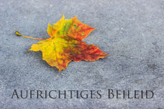 Mourning card. German mourning card with autumn leaves Stock Images