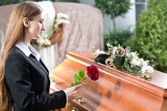 Mourning Woman at Funeral with coffin. Mourning woman on funeral with red rose standing at casket or coffin Royalty Free Stock Images
