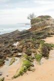 Mouro-Insel Santander Stockfotos