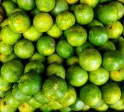 Mousambi vert vibrant images libres de droits