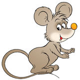 Mouse. Isolated clip-art and children's illustration for yours design, postcard, album, cover, scrapbook, etc Stock Photo