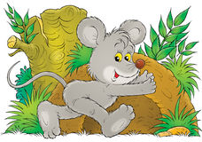 Mouse. Isolated clip-art and children's illustration for yours design, postcard, album, cover, scrapbook, etc Royalty Free Stock Images