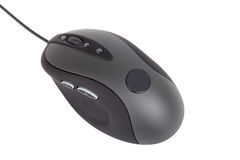Mouse Stock Photos