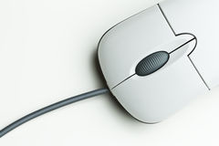 Free Mouse Royalty Free Stock Photo - 5186235