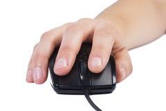 mouse immagine stock libera da diritti