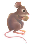 Mouse. A mouse munching crumb of bread Stock Photography