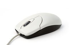 Mouse. Optical wheel mouse on white background Stock Images