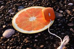 Mouse arancione Fotografia Stock