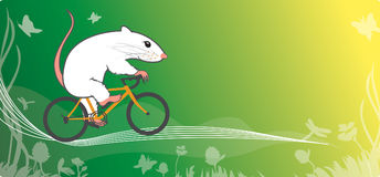 Mouse and bicycle Stock Photos