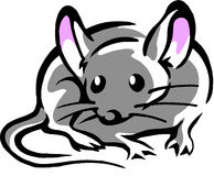 Mouse with big pink ears Stock Photo