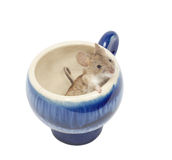 Mouse in a blue glass Royalty Free Stock Photo