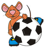 Mouse in boots holding a soccer ball Stock Image