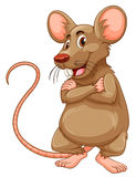 Mouse with brown fur Royalty Free Stock Images