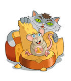 Mouse and Cat Royalty Free Stock Photos