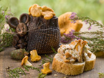 Mouse with chanterelles Stock Photos