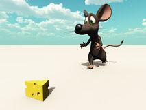 Mouse chase outdoors Stock Images