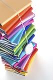 Mouse che pende dalla parte superiore della pila di libro multi-colored Fotografia Stock Libera da Diritti